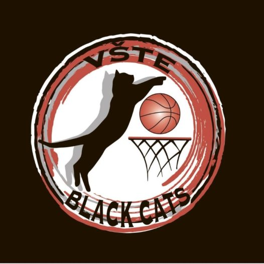We are setting up a women's basketball team Black Cats and we are looking just for you!